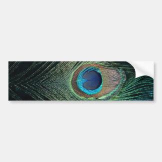 Pluma oscura del pavo real etiqueta de parachoque