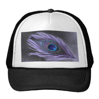 Pluma púrpura del pavo real en negro gorra