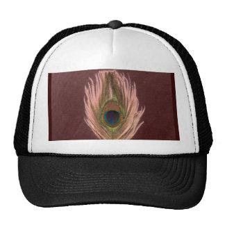 Pluma rosada D del pavo real Gorras