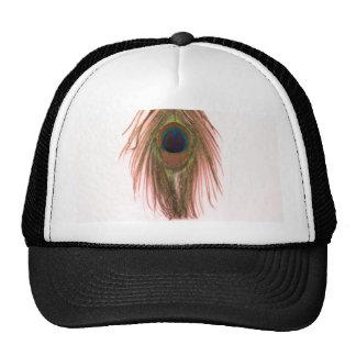Pluma rosada del pavo real gorras de camionero