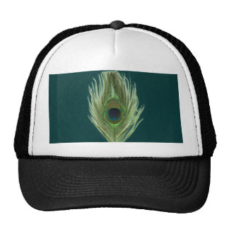 Pluma verde D del pavo real Gorras