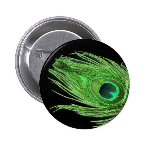 Pluma verde del pavo real en negro pin redondo de 2 pulgadas