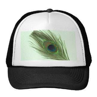 Pluma verde del pavo real en verde gorros bordados