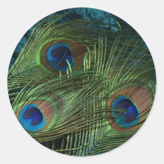 Pluma verde del pavo real etiquetas redondas