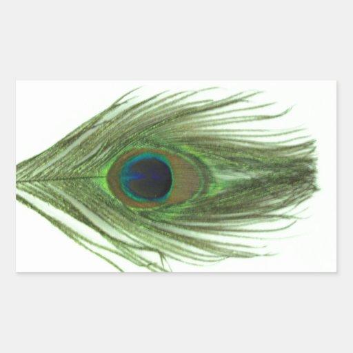 Pluma verde del pavo real pegatina rectangular