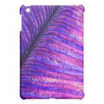 Pluma violeta