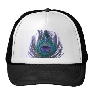 Pluma violeta del pavo real gorras de camionero