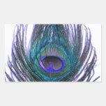 Pluma violeta del pavo real pegatina rectangular