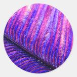 Pluma violeta etiqueta redonda
