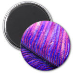 Pluma violeta iman de frigorífico