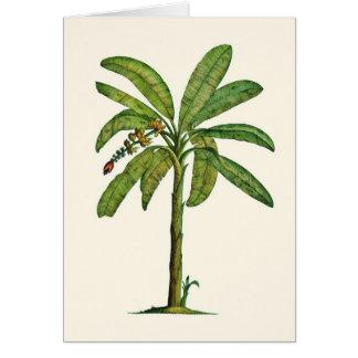 Pluma y tinta del árbol de plátano tarjeton