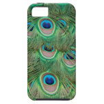 Plumaje del pavo real iPhone 5 Case-Mate protectores