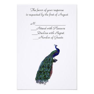 Plumaje del pavo real que casa la tarjeta de RSVP Invitaciones Personales