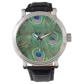 Plumaje del pavo real reloj de mano