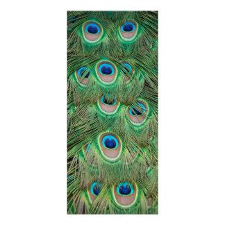 Plumaje del pavo real plantillas de lonas