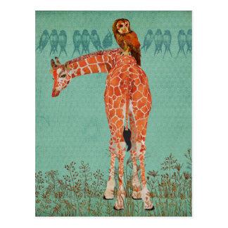 Plumas ambarinas de la jirafa y del búho tarjeta postal