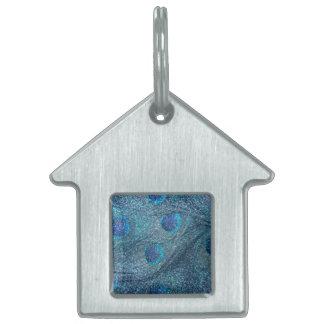 plumas azules brumosas del pavo real del brillo placa de mascota