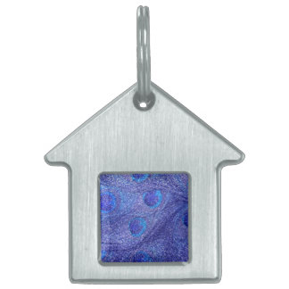 Plumas azules de neón del pavo real del brillo placas mascota