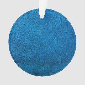 Plumas azules del pavo real