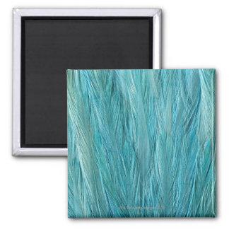 Plumas azules imán cuadrado