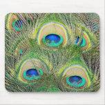 Plumas azules indias del pavo real tapetes de raton