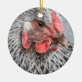 Plumas blancos y negros de la foto linda del pollo adorno redondo de cerámica
