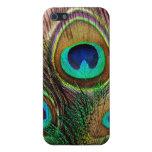 Plumas coloreadas joya hermosa elegante del pavo r iPhone 5 fundas