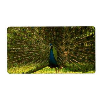 plumas de extensión mismo de un pavo real del etiqueta de envío