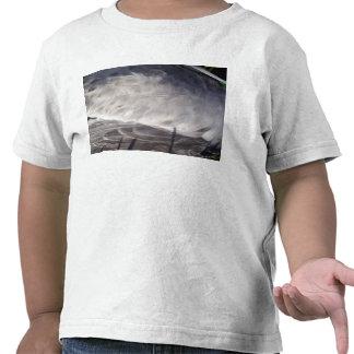 Plumas de la gaviota camiseta