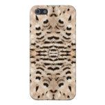 Plumas del halcón de peregrino iPhone 5 cárcasas