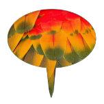 Plumas del Macaw Decoraciones Para Tartas