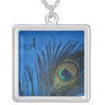Plumas del pavo real con el collar azul marino