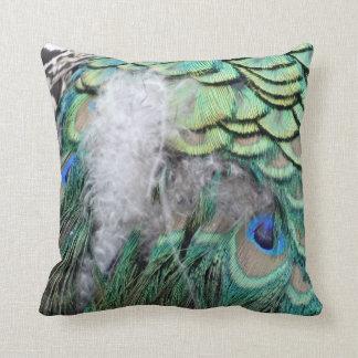 Plumas del pavo real con los ojos azules cojines
