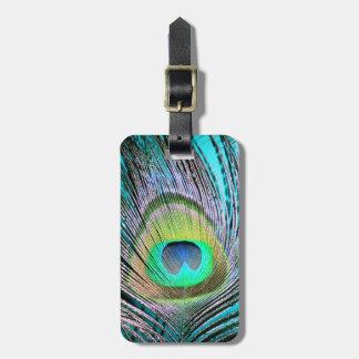 Plumas del pavo real en la turquesa etiqueta de maleta