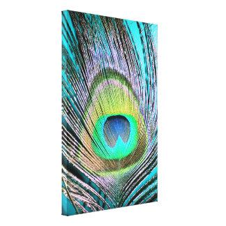 Plumas del pavo real en la turquesa impresiones en lona estiradas