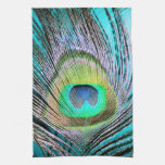 Plumas del pavo real en la turquesa toallas de mano