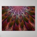 Plumas del pavo real impresiones