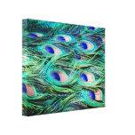 Plumas del pavo real impresiones en lona estiradas