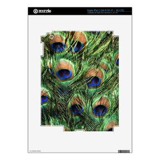plumas del pavo real iPad 3 skins