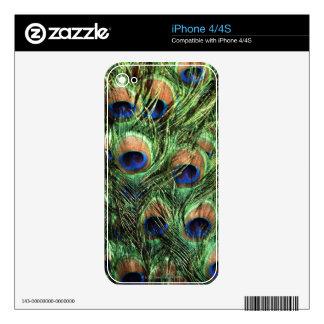 plumas del pavo real iPhone 4 calcomanías
