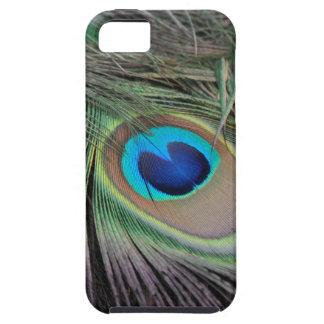 Plumas del pavo real iPhone 5 fundas