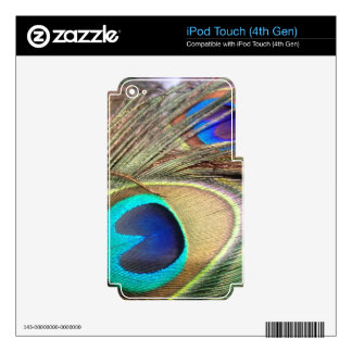 Plumas del pavo real iPod touch 4G skin