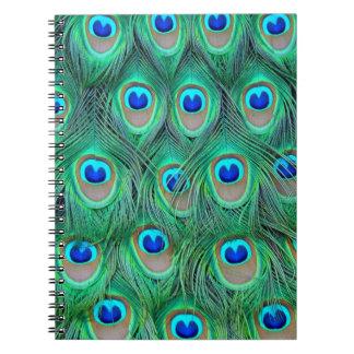 plumas del pavo real libretas