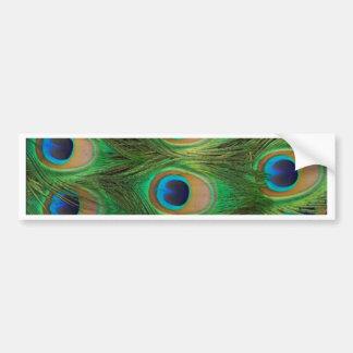 Plumas del pavo real - Peafowl Etiqueta De Parachoque