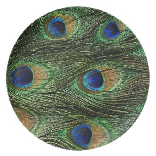 Plumas del pavo real plato de comida