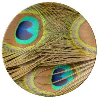 Plumas del pavo real platos de cerámica