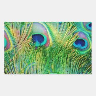 Plumas del pavo real rectangular altavoces