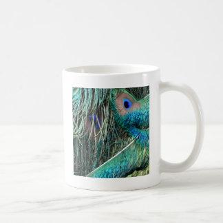 plumas mojadas del peafowl taza de café