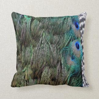 Plumas preciosas del pavo real con los ojos almohada