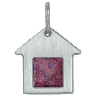 Plumas púrpuras del pavo real del brillo del cirue placa mascota